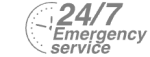 24/7 Emergency Service Pest Control in Eltham, Mottingham, SE9. Call Now! 020 8166 9746