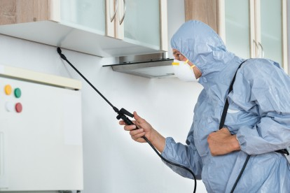 Home Pest Control, Pest Control in Eltham, Mottingham, SE9. Call Now 020 8166 9746